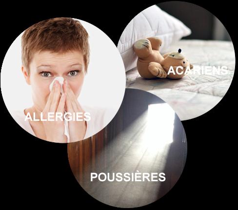 allergies acariens et poussières